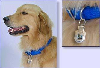 Top Tag Pet ID para identificar a nuestra mascota