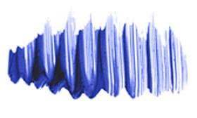 Diorshow blue