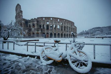 Roma Nieve 4