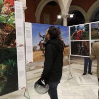 Cinco museos y exposiciones para no perderse en mayo