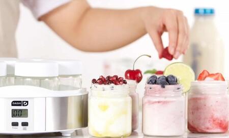 Yogurtera2