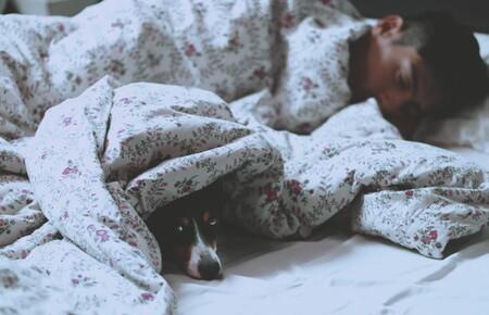 Los patrones de sueño también influen en nuestra salud: tener horarios regulares y acostarnos pronto nos ayuda a estar más sanos