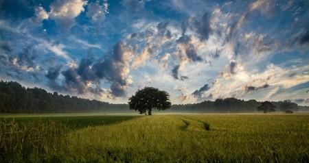 Fotos con el celular (II): cinco consejos para lograr los mejores paisajes