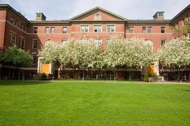 Los vídeos de la escuela Ciencia y cocina de Harvard a disposición de todo el mundo