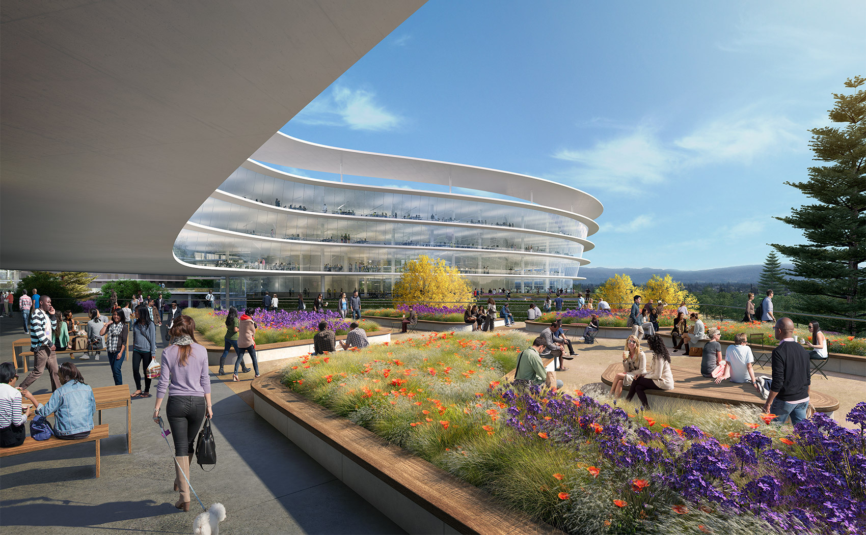 Foto de Campus de Apple en Sunnyvale (4/5)