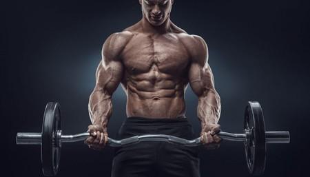 Bodybuilding E6695071ad 1024x615 1024x585