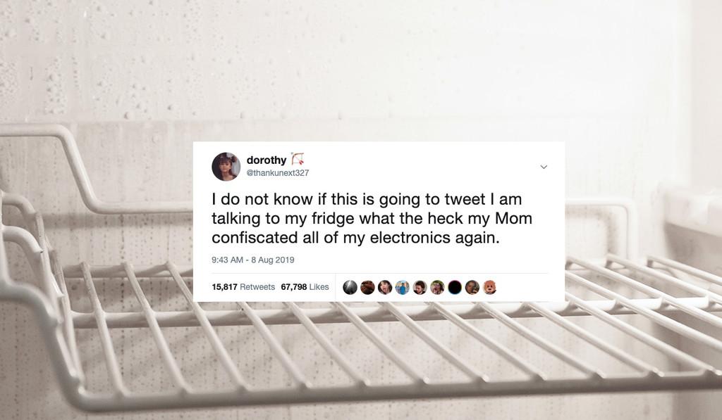 Su madre le confiscó el teléfono, pero esta adolescente consiguió seguir publicando tweets gracias a su frigorífico inteligente
