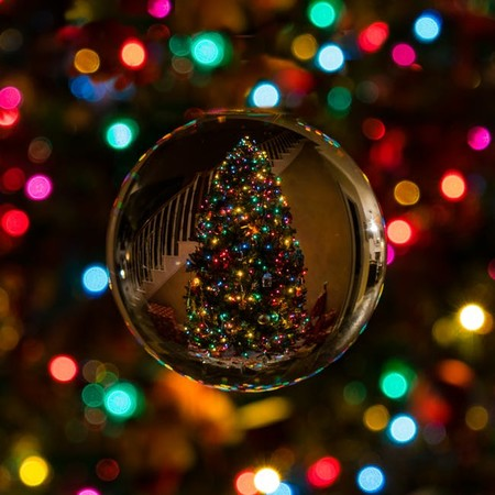 Árbol de Navidad orgánico