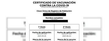 Certificado de vacunación contra COVID en México: cómo tramitar y descargar en internet