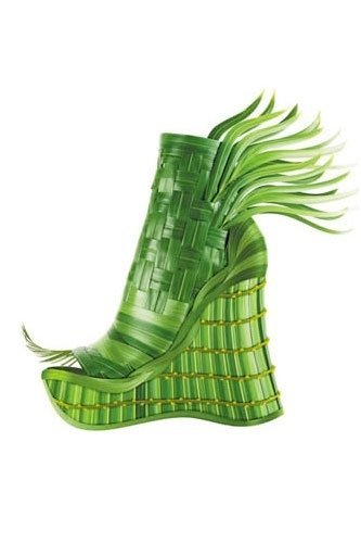 crazy-shoes-plant-thumb-333xauto-32952.jpg