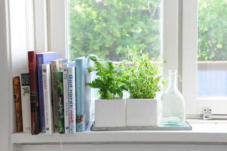 Algunas ideas para decorar tu cocina con plantas aromáticas (y cómo cuidarlas)