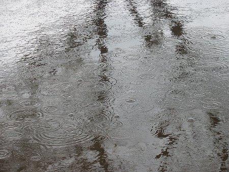 Esencia de lluvia, ¿Por qué nos gusta?