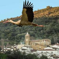 Los pueblos más bonitos de España nos enamoran con los finalistas de su concurso de fotografía
