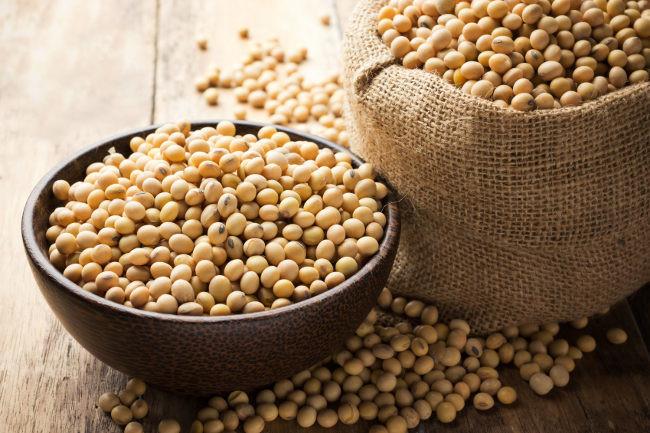 Soja: la legumbre con más grasas