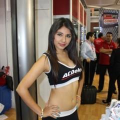 Foto 9 de 54 de la galería paace-automechanika-mexico-2013 en Motorpasión México