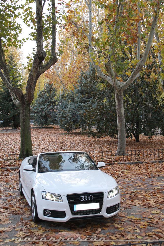 Foto de Audi A5 3.0 TDI Cabrio - prueba (1/61)