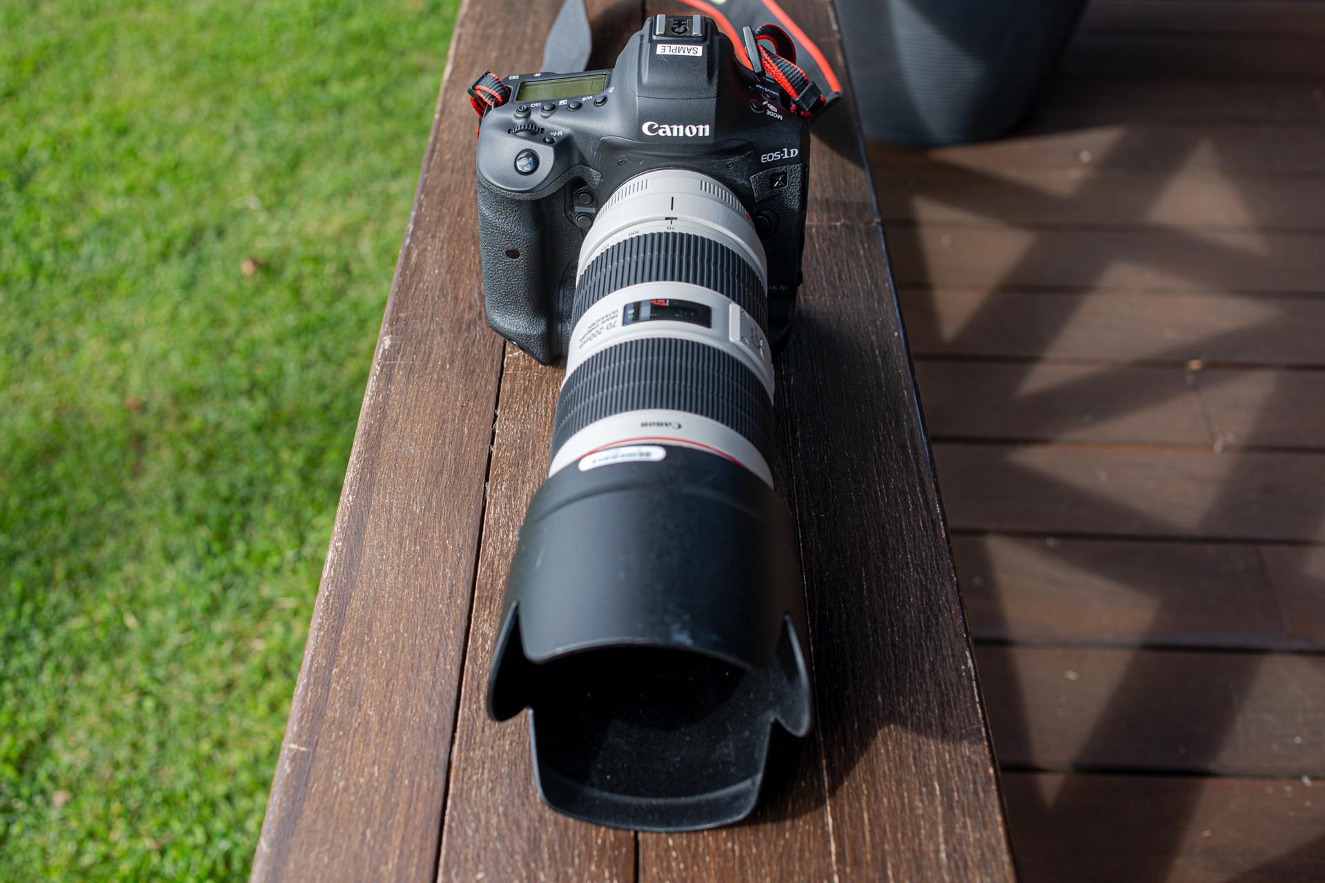 Foto de Canon EOS-1D X Mark III (11/38)