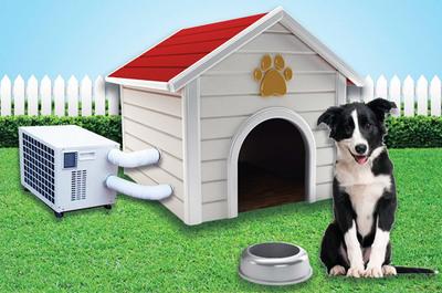 Un climatizador para la caseta del perro es justo lo que tu fiel amigo estaba deseando