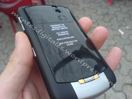 blackberry daytona.jpg