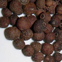 Pimienta de Jamaica (Pimenta dioica)