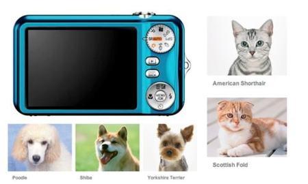 Fujifilm lleva el reconocimiento de rostros a los perros y gatos