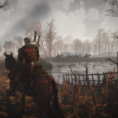 the-witcher-3-wild-hunt-29-01-2014