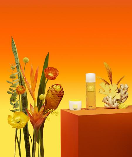 El jengibre tiene muchas propiedades y Kenzo lanza una colección basada en esta planta (que ya hemos probado)