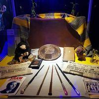 Experiencia Patronus: disfrutar de Hogwarts y el universo Harry Potter en pleno Madrid