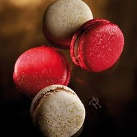 Pierre Hermé propone Macarons de gelée de Foie Gras. Aperitivo de lujo