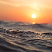 Dos tercios de nuestros océanos están desprotegidos y en la ONU comienza a negociarse una posible solución