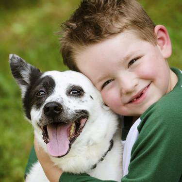 Los perros terapéuticos pueden ayudar a reducir el estrés y la ansiedad de los alumnos, así como mejorar la asistencia a clase
