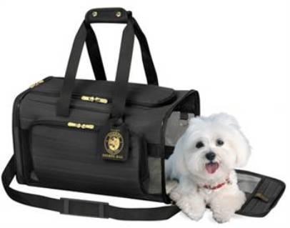 Accesorios de viaje para mascotas for Accesorios para mascotas