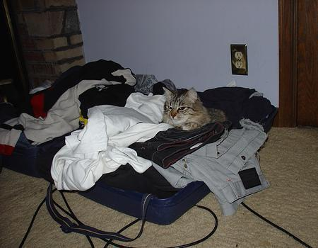 """Truco para """"planchar"""" la ropa cuando estás de viaje"""
