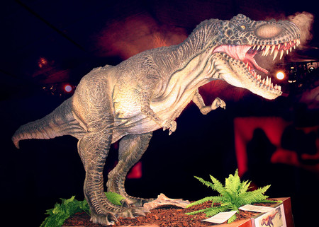 Dino Expo Xxl 5
