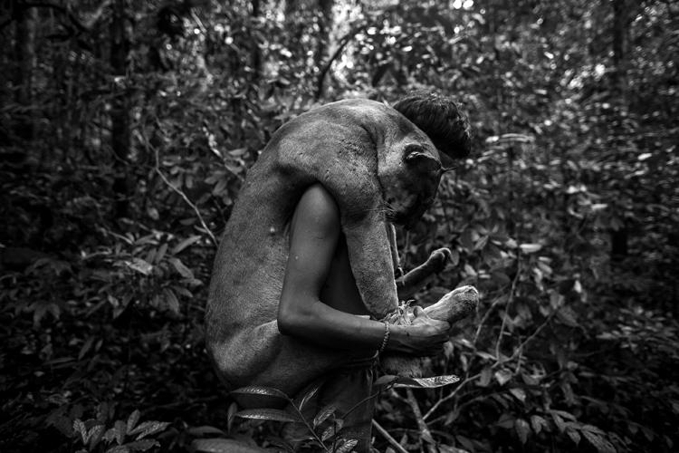 Foto de Daniel Rodrigues (2/11)