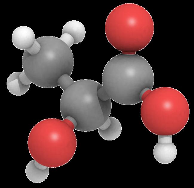 Todo lo que hay que saber sobre el ácido láctico