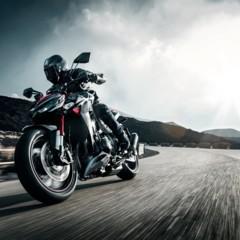 Foto 11 de 20 de la galería kawasaki-z800-y-z1000-sugomi-special-edition en Motorpasion Moto