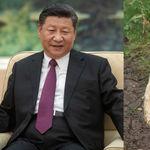 China no aguanta más bromitas sobre Winnie the Pooh y prohíbe el estreno de su próxima película