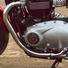 Foto 5 de 23 de la galería triumph-bonneville-t100-bud-ekins-2020 en Motorpasion Moto