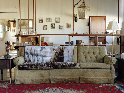 'Un cierto panorama. Reciente fotografía de autor en España', la exposición sobre una nueva generación que rompe moldes