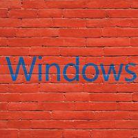 Microsoft sigue puliendo el lanzamiento de la actualización de primavera y libera la Build 19041.113 dentro del Anillo Lento