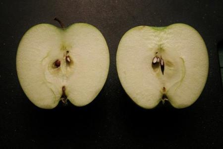 manzana mitad