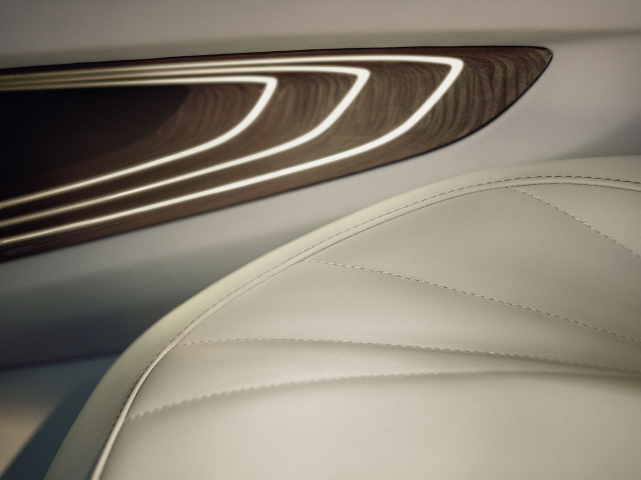 Foto de BMW Vision Future Luxury (39/42)
