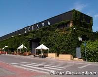 Saldillo Becara 2009. La visita