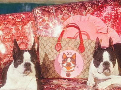 Atención, amantes de los perros: Gucci celebra el Año Nuevo chino con una colección que os enamorará