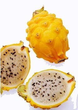 La pitaya amarilla, dulce y refrescante fruta