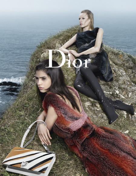 Dior Fw15 Pap 4