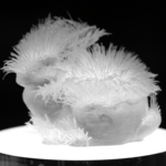 Científicos del MIT descubren como imprimir pelo en nuestra propia casa