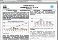 Cómo diseñar un estudio de mercado