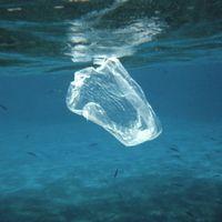 El plástico es horroroso para el medio ambiente, pero ¿podríamos vivir sin él?